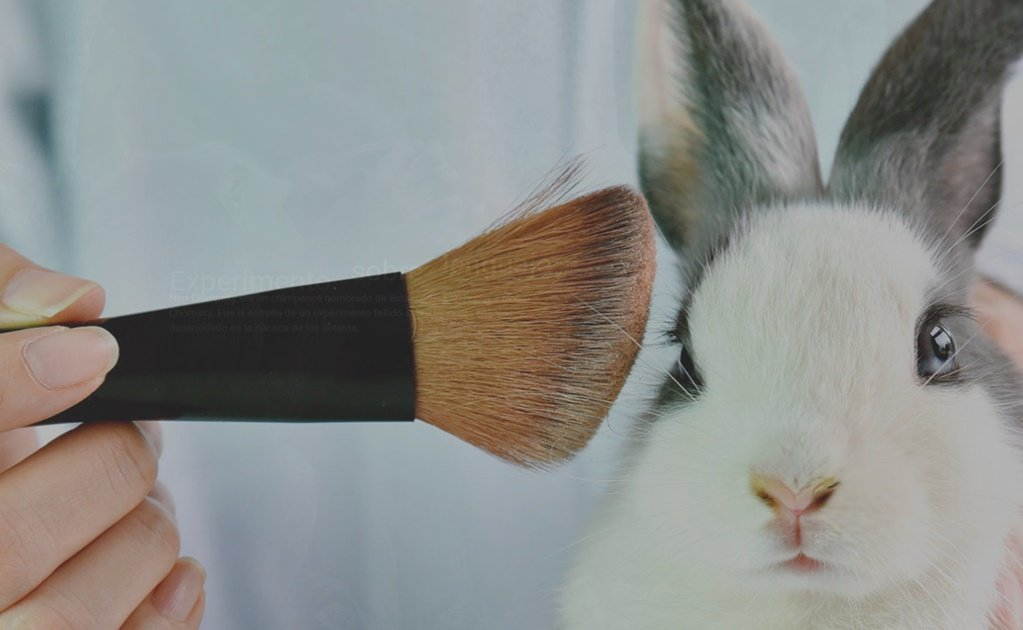 Animal testing, is there any other option?