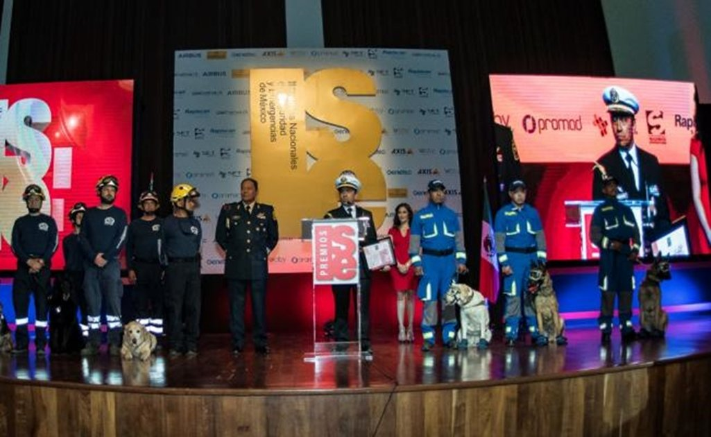 Rescue dogs awarded for their outstanding work