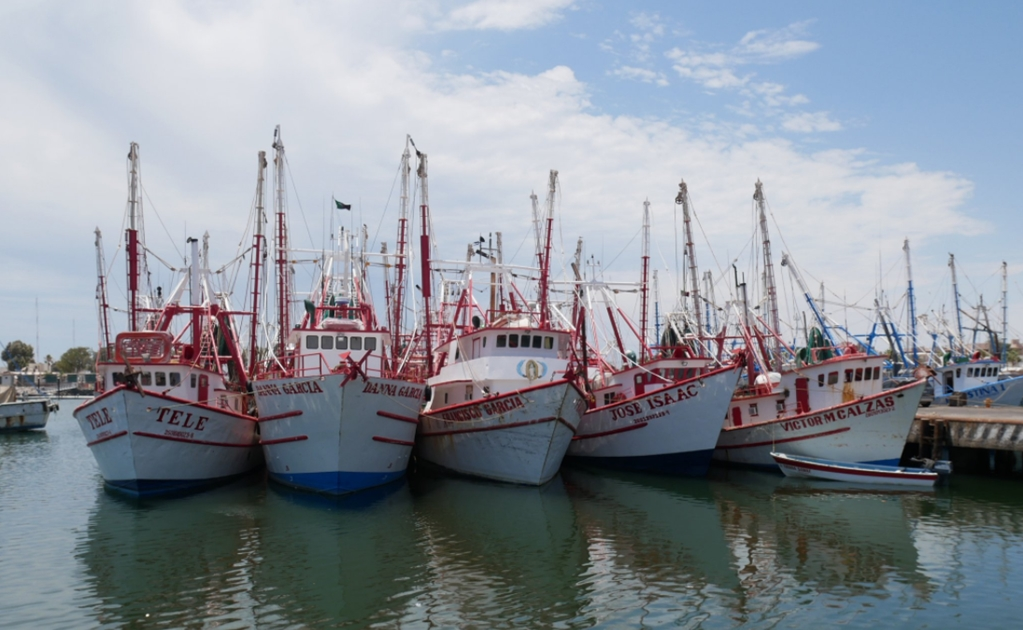 Northwestern states receive 66% of total fishing subsidies in Mexico