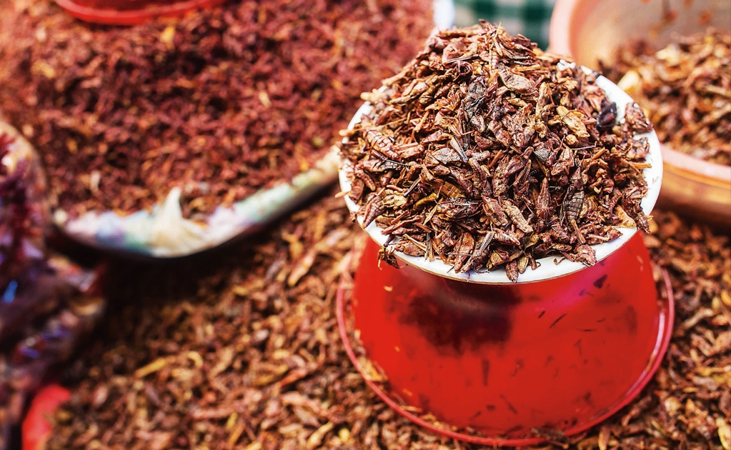 10 Mexican super foods you should include in your diet
