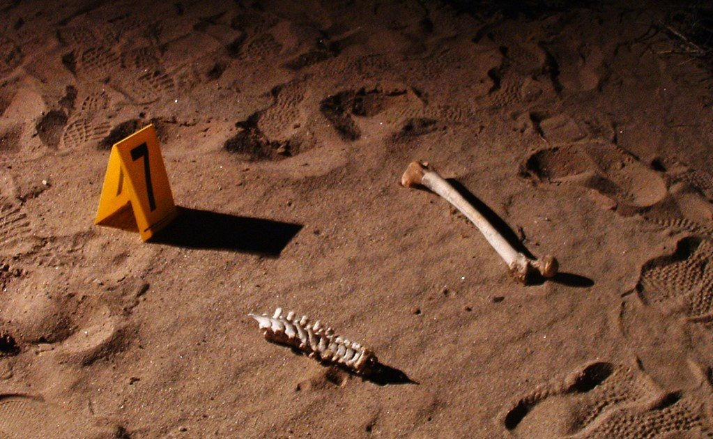 More mass graves found in Mexico