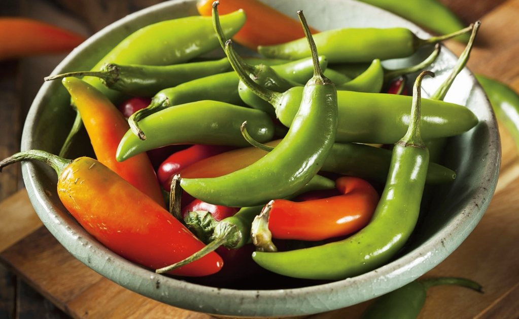 Highly productive strain of 'serrano' pepper developed in Mexico