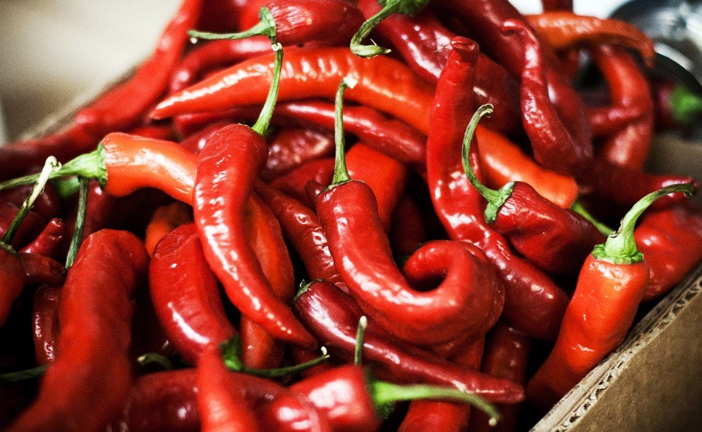 The 7 most spicy Mexican chilies