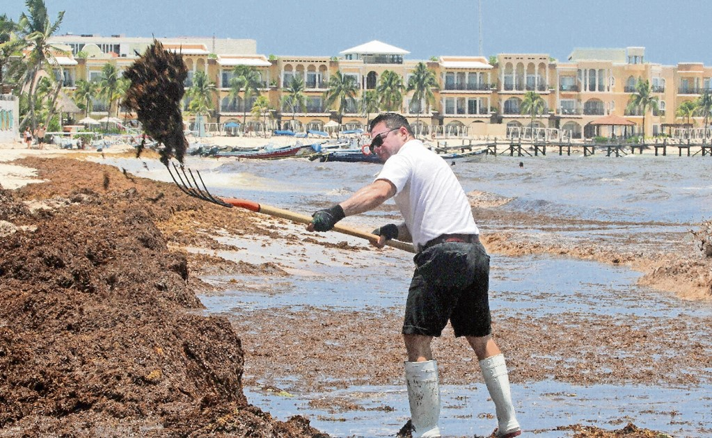 Is the United States to blame for sargassum?