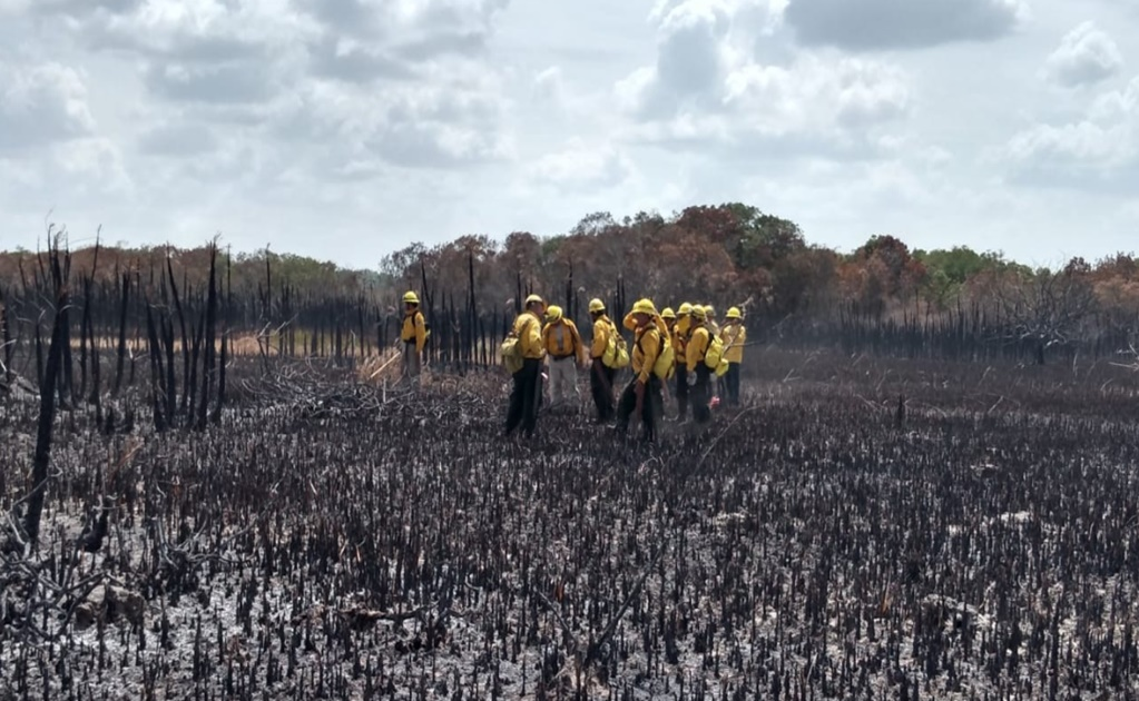 Wildfire in the Biosphere Reserve of Sian Ka'an, Quintana Roo
