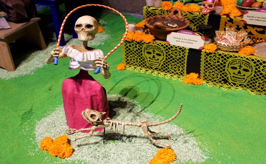 Day of the Dead Altars and Flowers Festival