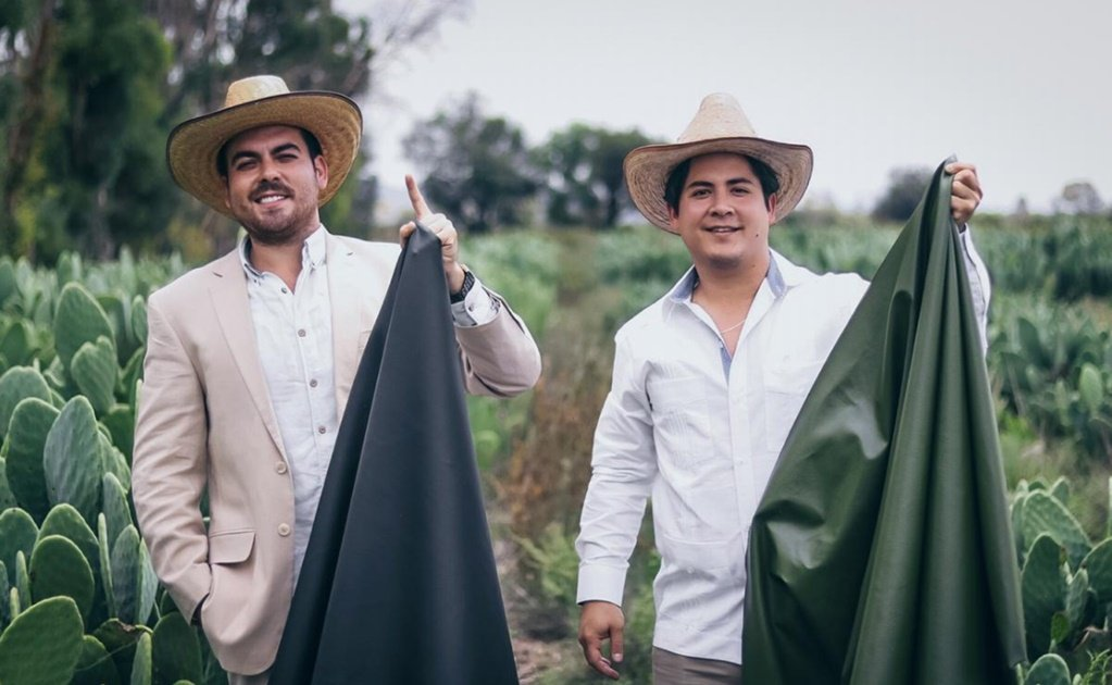 Mexicans create the first vegan leather using nopal