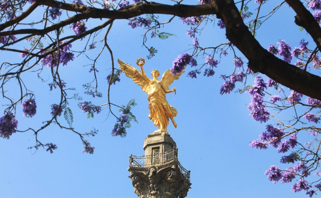 The essential guide to Mexico City