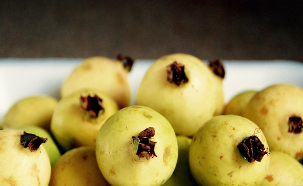 The many health benefits of guava