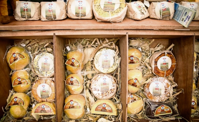 Mexico pressured to stop using European cheese names