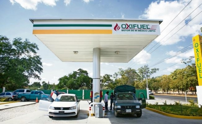 Gasoline price hike encourages biofuels in Oaxaca