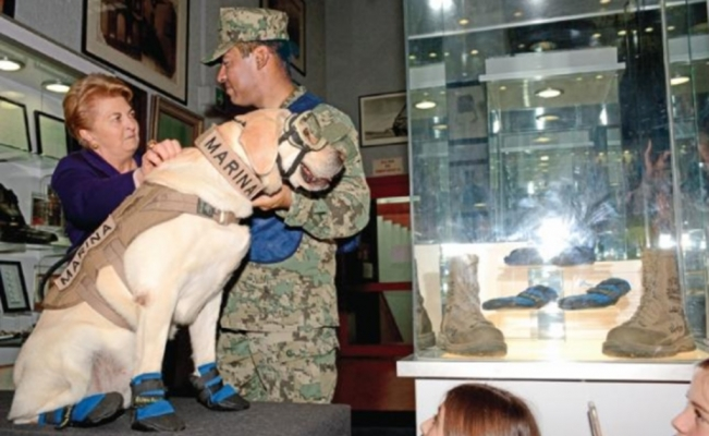 Frida donates her rescue boots