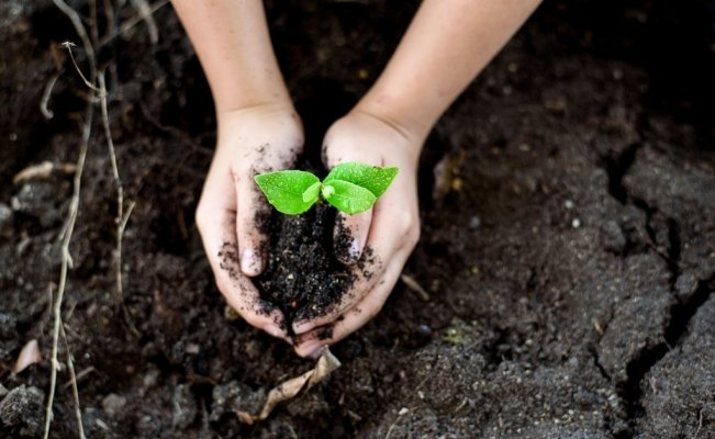 Companies join world initiative to protect the environment