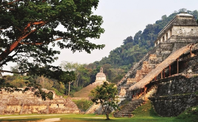 Ancient Maya document analyzed