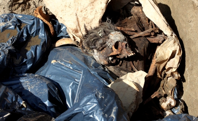 Mass graves with at least 166 bodies found in Veracruz