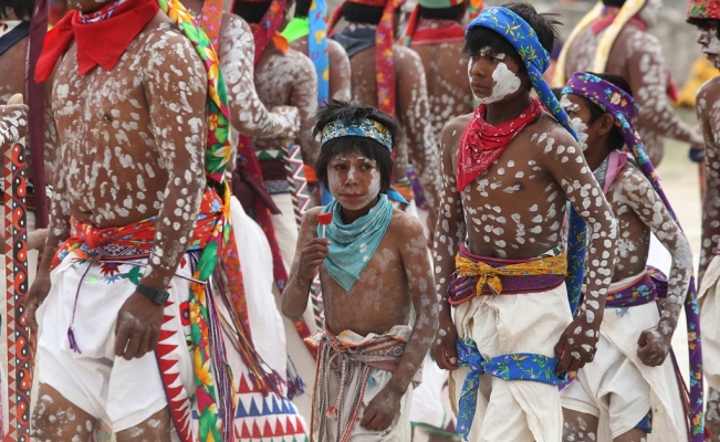 Mexico's indigenous languages are in danger of disappearing