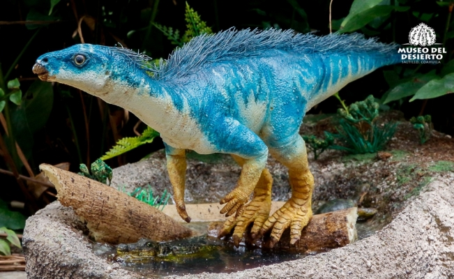 Mexican scientists discover dinosaur fossil in Coahuila