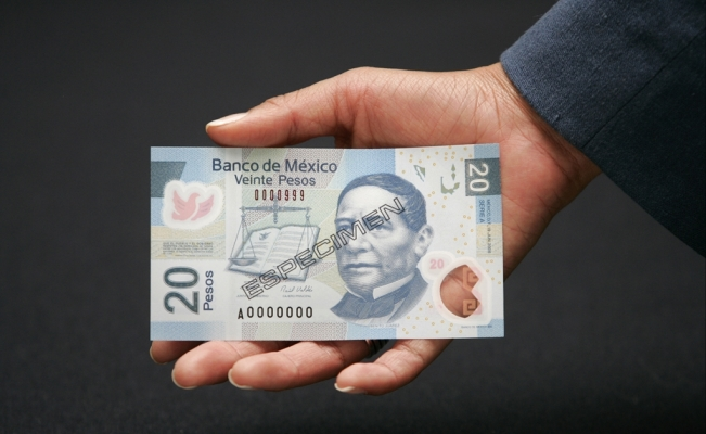 Experts anticipate 30% drop in Mexico's foreign investment inflow