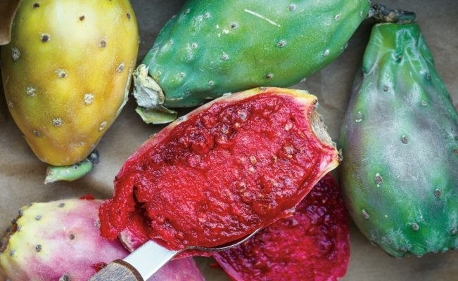 Prickly pear: 3 incredible health benefits