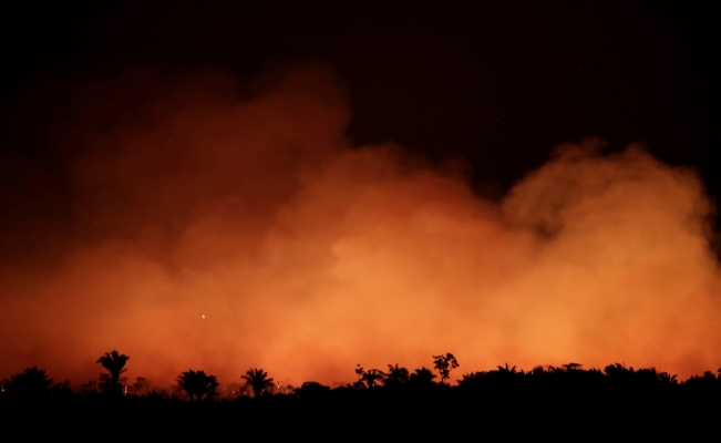 What is fuelling climate change and the Amazon destruction?