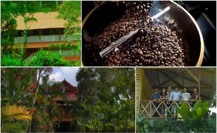 The coffee route of Chiapas