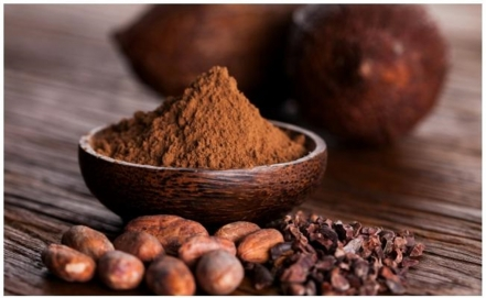 Mexican chocolate enters the international scene