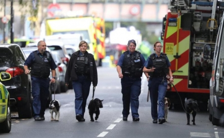 Home made bomb explodes on London train