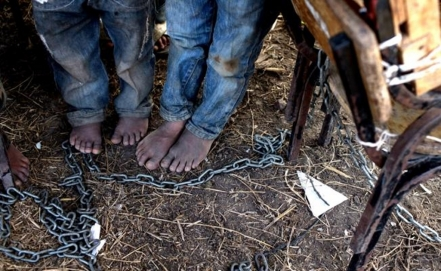 Chained to misery: child labor in Michoacán