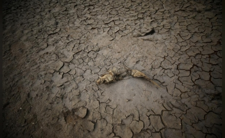 Cape Town might become first major city to run out of water