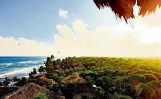 Construction projects shut down in Tulum