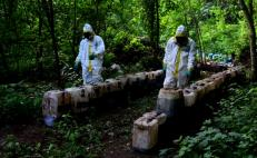 Mexico navy finds 50 tons of meth in mountain lab