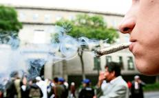 Supreme Court approves medicinal use of marijuana in Mexico