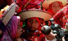 Mexican students create app to learn Tseltal