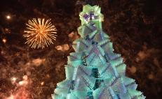 Aguascalientes breaks Guinness World Record for tallest recyclable Christmas tree