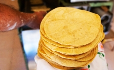 Mexican scientists fight obesity with barley tortillas