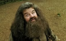 "Robbie Coltrane, actor que interpreta a ""Hagrid"" en Harry Potter, aparece en silla de ruedas"