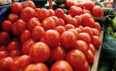 U.S. imposes 17.5% tariff on Mexican tomatoes