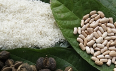 Brazil and Mexico to trade rice and beans