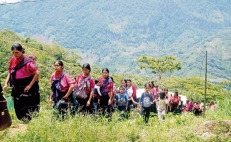 More than 11,000 people displaced by violence in Mexico