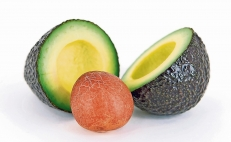 Avocado pits are good for your health