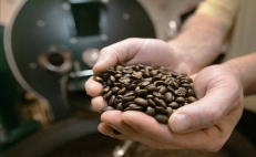 Mexico calls Mesoamerican countries to work jointly on coffee prices