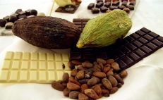 Health benefits of cacao and chocolate