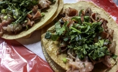 The many health benefits of tripe tacos
