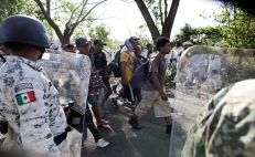 Mexico detains 800 Central American migrants