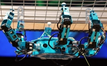 Mexican students create rescue robots