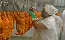 17 people fall victim to meth OD after eating chicken