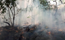 Woman faces up to 10 years in prison after setting the Tepozteco national park on fire while recording a video for social media