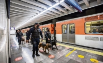 Sniffer dogs help Mexico City's subway fight drug dealing