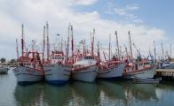 Northwestern states receive 66% of total fisheries subsidies in Mexico