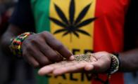 South Africa decriminalizes private marijuana use and private cultivation